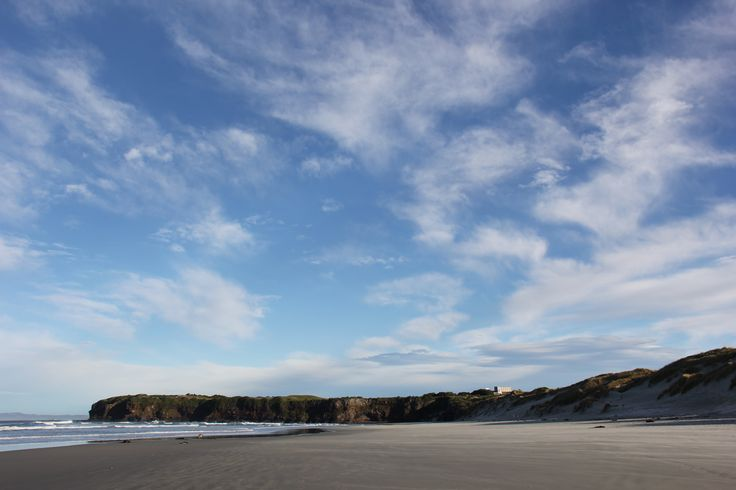 Tomahawk Beach Dunedin