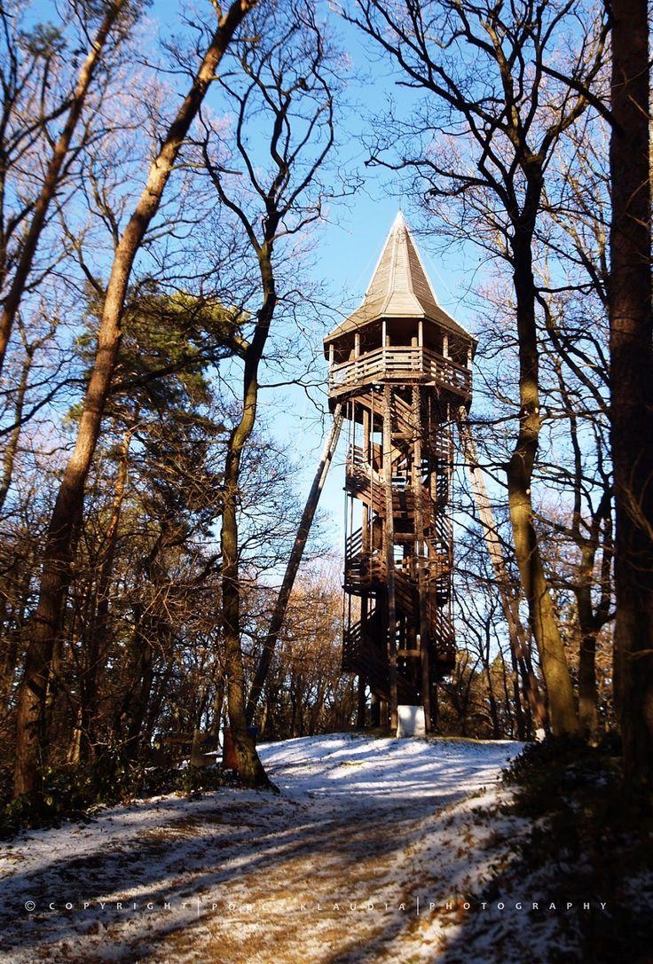 December 30-án sétálni indultunk az erdőbe. Több, mint négy órát sétáltunk hegyen-völgyön, patakparton, kilátóban. A végeredmény tíz km. Rem...