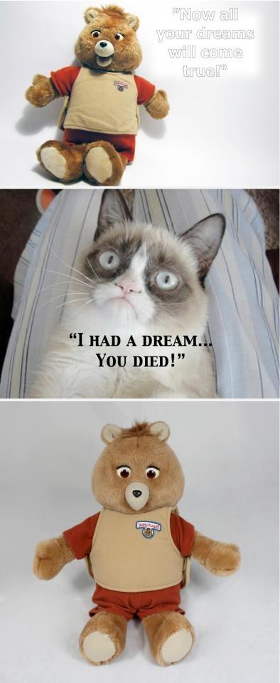 Grumpy Cat vs Teddy Ruxpin