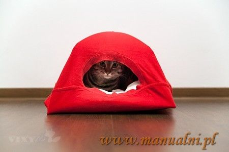 DYI cat tent - namiot domek dla kota z wieszakow i koszulki