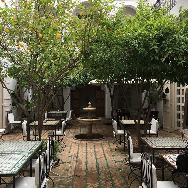 Morning in Marrakech. Riad Clementine.