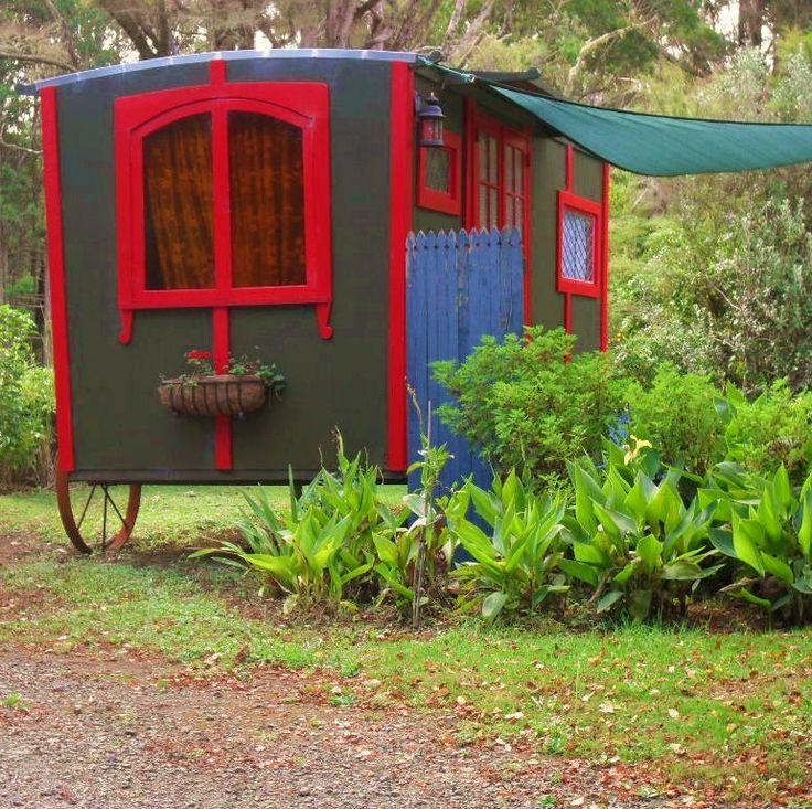 Stay in a gypsy caravan - Northland New Zealand