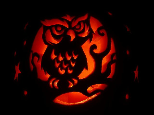 117 best halloween pumpkin carving contest images on for Pumpkin carving ideas owl
