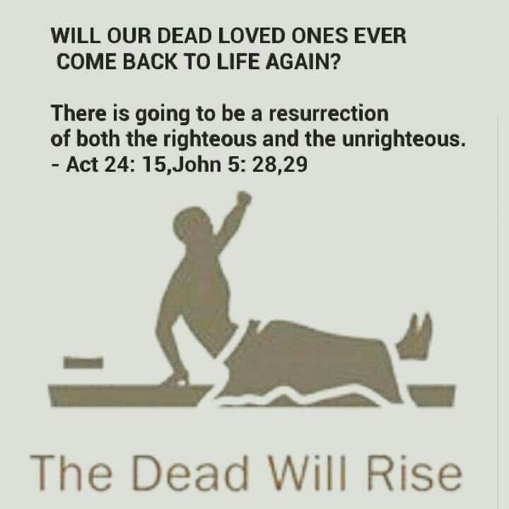 Will our dead loved ones ever come back to life again? - Acts 24:15; John 5:28, 29.