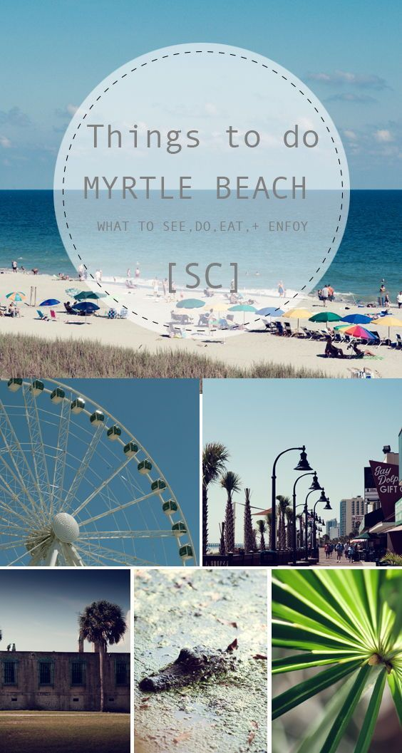 Things To Do In Myrtle Beach Sc Vacation Fun Favorite Travel Pins Pinterest And