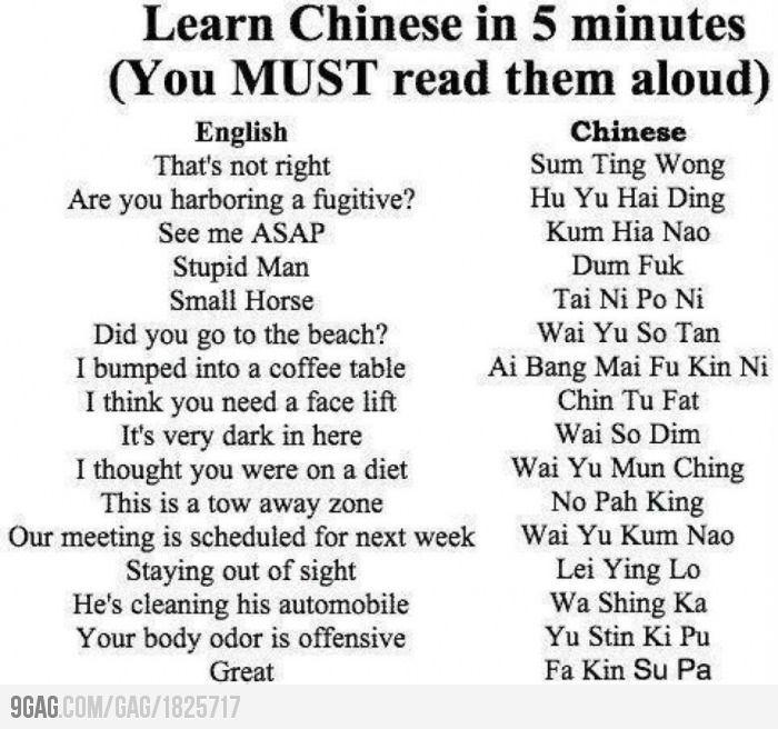 Learn Chinese in 5 minutes: Learn Chinese, Quote, Funny Stuff, Humor, Funnies, Things, Hilarious, Funnystuff