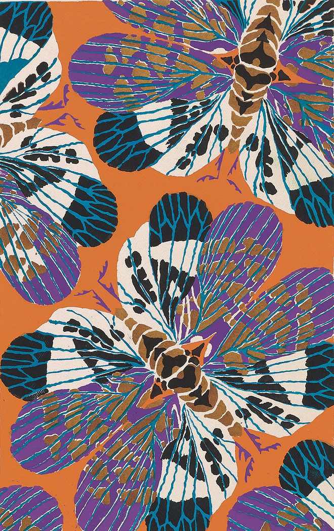 Eugène Séguy: Insectes #insects #pattern