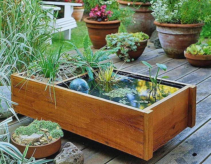 Do you want an in-ground water garden, but don't have the space in your backyard?    With a little timber, some basic carpentry tools, a pond liner, aquatic plants, decorative rocks, some fish to eat the mozzies and algae, and you can build yourself a miniature water garden. All of a sudden, space is not an issue :)    What do you think?