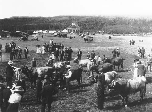 Minnedosa Fair 1912