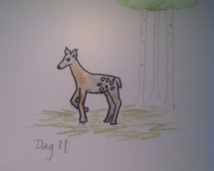 #Day11 - Freestyle Bambi