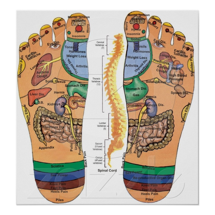 Acupressure Points Pressure Chart for the Feet | Zazzle ...