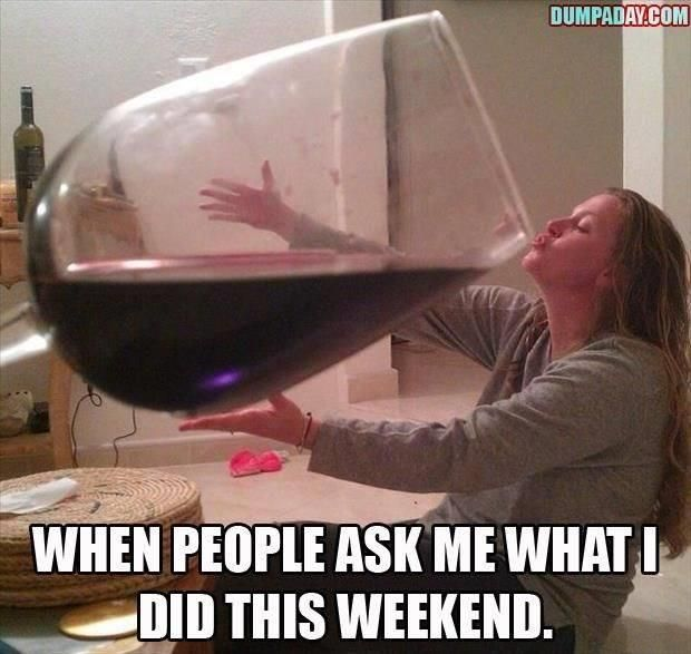 Funny Red Wine Meme : Best wine quotes and humor images on pinterest