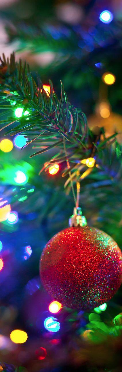 karácsonyi_háttér159.jpg