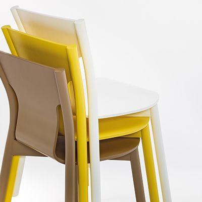 Tolo-tuoli