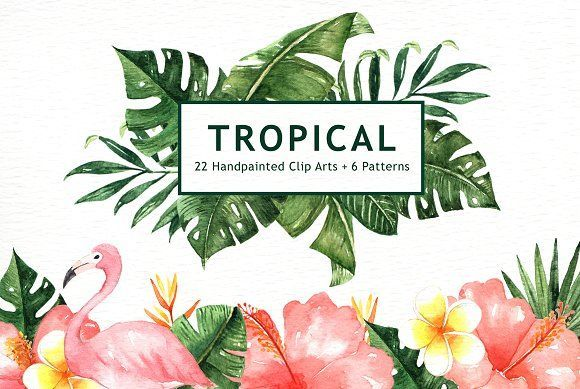Tropical Leaves Watercolor Clipart - Illustrations