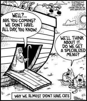 Religious humor                                                                                                                                                                                 More