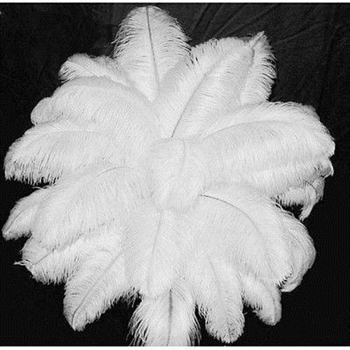 Wholesale5-1000pcs High Quality Natural WHITE OSTRICH FEATHERS 14-16inch/35-40cm