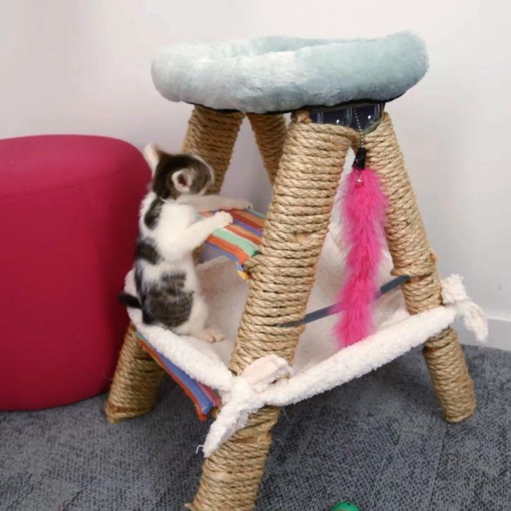 This Cat Jungle Gym Will Have Your Feline On Cloud Nine Rascador + cama + juego Para Gatos Cat Jungle Gym, Cat House Diy, House For Cats, Diy Cat Tree, Cat Hacks, Cat Diys, Diys For Cats, Cat Room, Cat Crafts