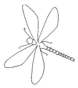 65 best INSECTS COLORING BOOK images on Pinterest | Insects ...