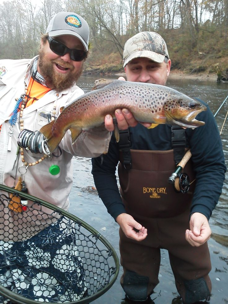 53 best images about heber springs where i was born on for Fly fishing arkansas