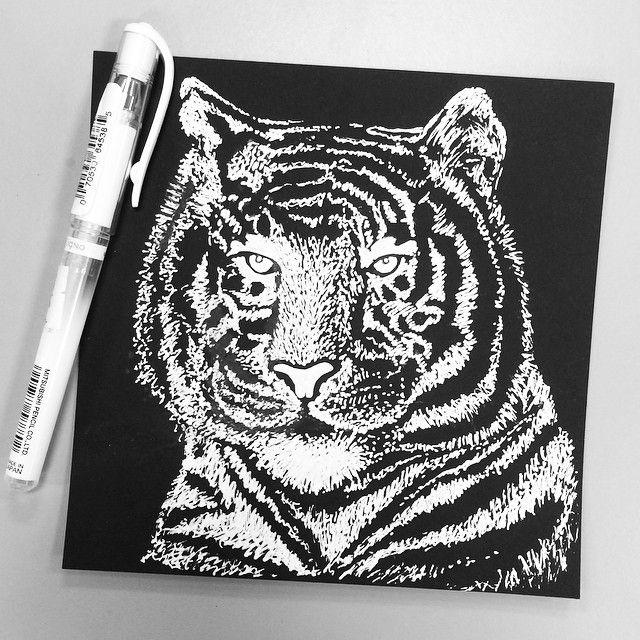 Tiger Illustration. White pen on black paper.