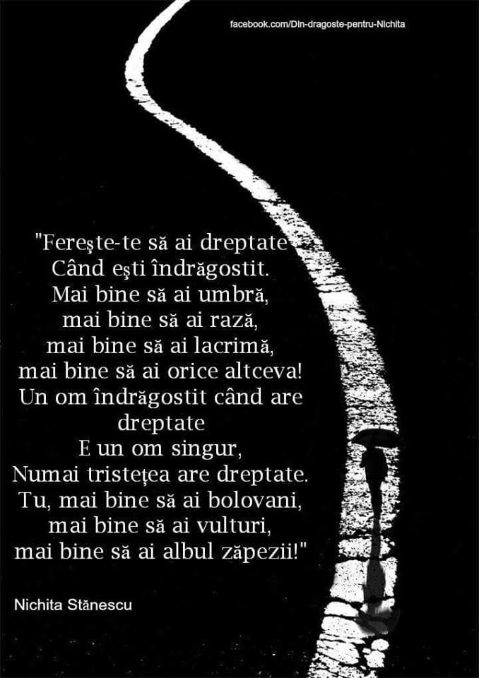 Nichita Stanescu (luat de pe Facebook)