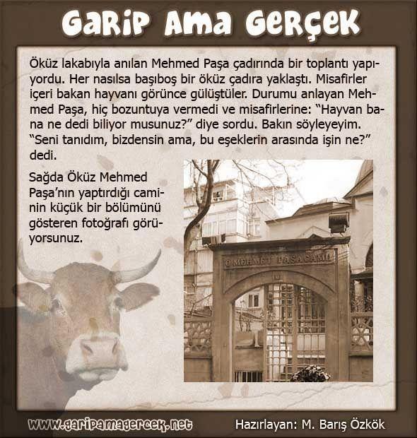 """Dörtyüz kese altın Öküz Mehmed Paşa, Ulukışla'nın bir aşireti olan """"Oğuz"""" aşiretindendi. Fakat Türkmenler arasında Oğuz kelimesi, Okuz olarak söylenir ve yazılırdı. Buna nisbetle Mehmed Paşa'nın adı Okuz Mehmed Paşa olmasına rağmen, yazılırken yapılan bir hata ile Öküz olarak meşhur oldu. Sultan I. Ahmed'in damadıdır. Kızı Gevherhan Sultan ile evlenmiştir. Mehmed Paşa'nın ilk vazifesi, Mısır Valiliğidir. Daha 27 yaşında iken Gevherhan Sultan ile evlenmiş ve hemen Mısır Valiliğine tayin…"""