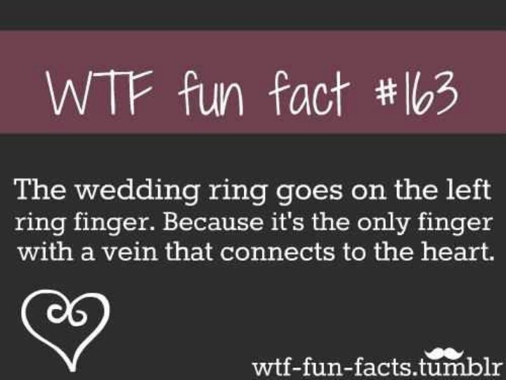 I never knew this!!!