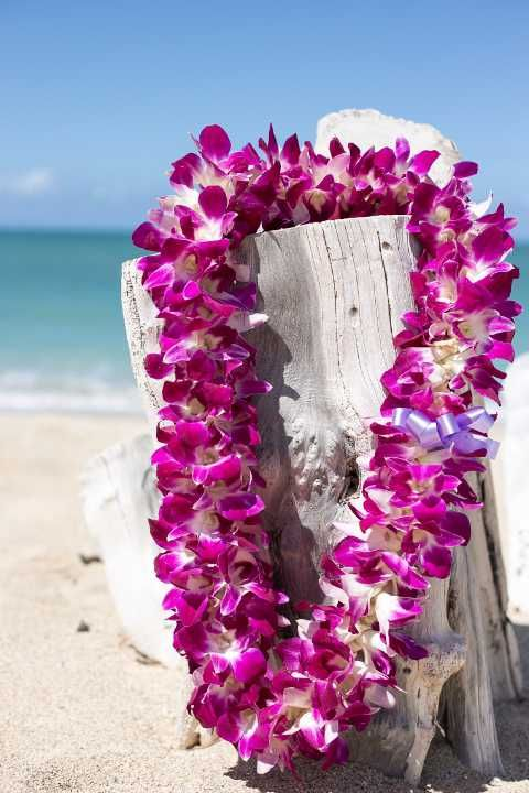 Big Island of Hawaii Kona Airport Lei Greetings - Hawaii Discount
