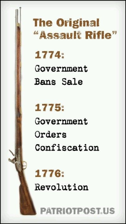 History is repeating itself through Gun Control, and the only one's that don't see it are the sheople that follow Obama like a shephard. Ban Gun Control!