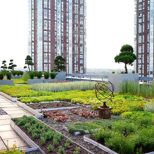 8 Incredible Rooftop Gardens You Can Actually Visit In Montreal