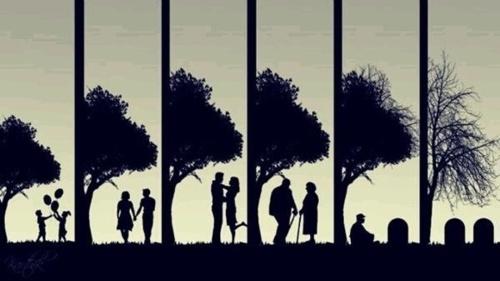 LEVENSLOOP - de cyclus van het leven.