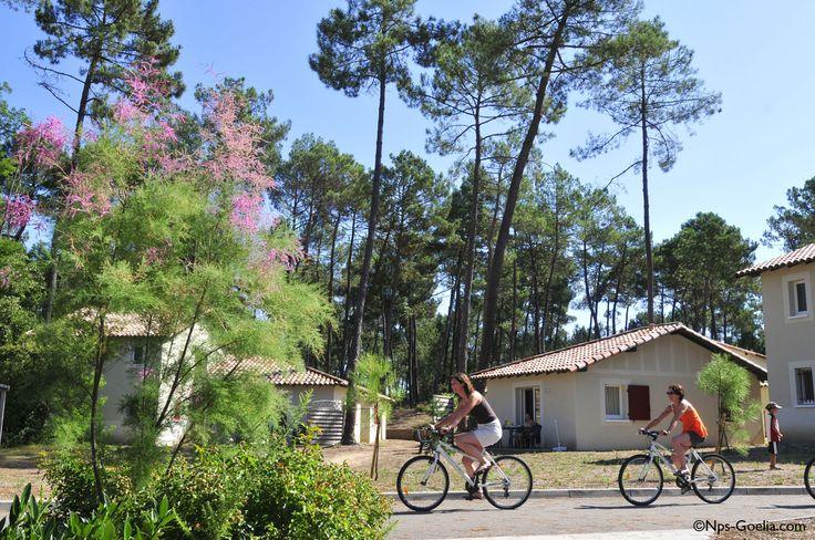 Profitez d'activités comme la location de vélo pour découvrir la région. Résidence Goelia à Casteljaloux.