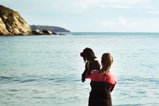 Growing up with Spaniels | You'll Find Me by the Sea