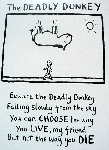 More people are killed by donkeys every year than die in plane crashes. Ed knows what he's talking about....