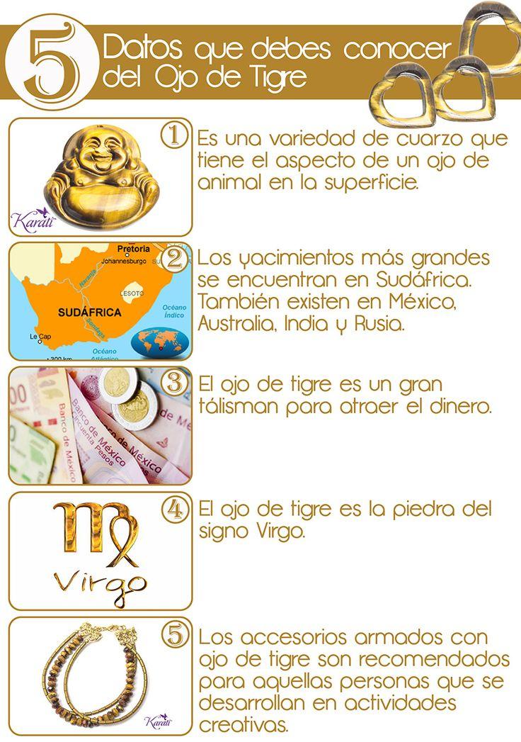 ¿Conocías estos 5 datos sobre el ojo de tigre? #5cosasque #datoscuriosos