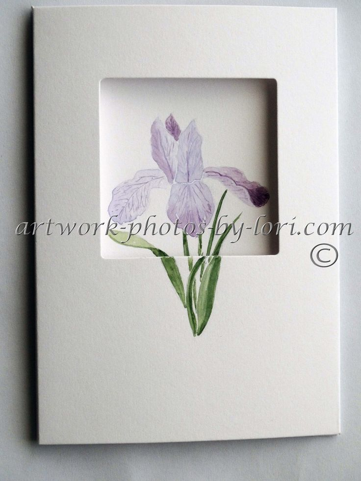 hand painted watercolour notelet of a iris (outside view)