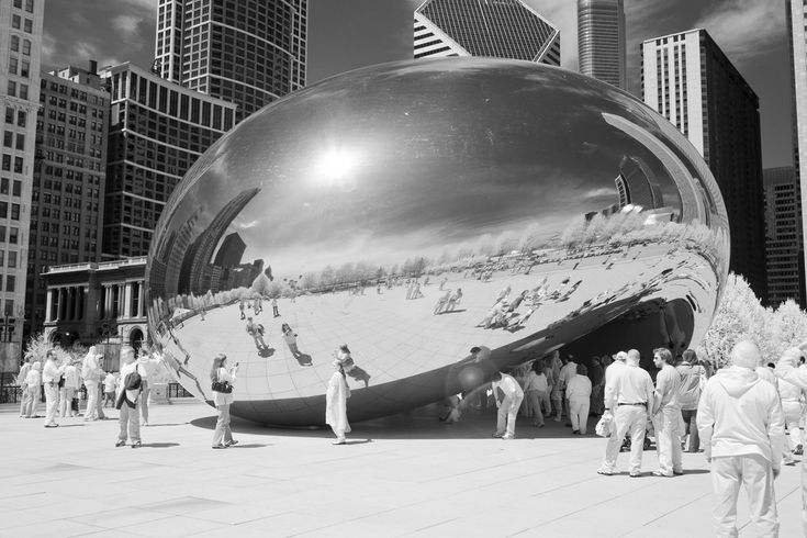 Infrared Bean by Randy