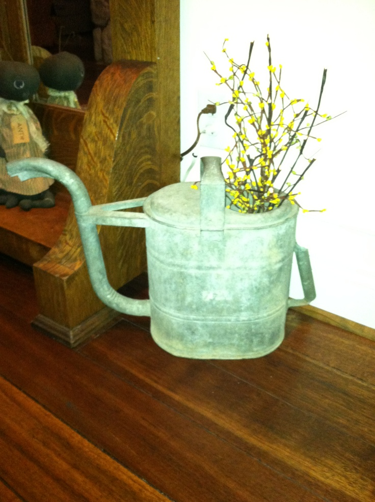 17 Best Images About Antique Watering Cans On Pinterest