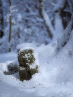 "Kyoto winter,""Jizo"" in temple."
