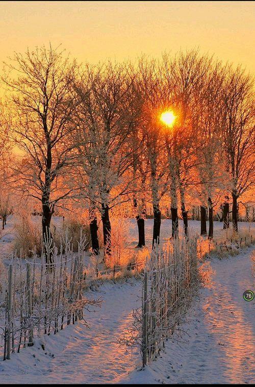 Winter sunset! - Christmas Memories - meadoria