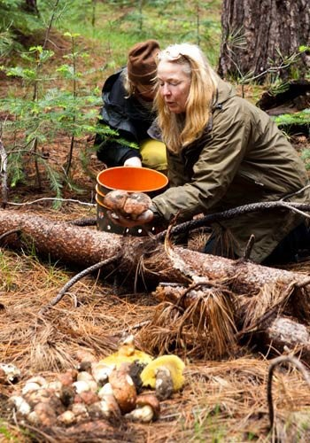 How do those wild mushrooms get from the forest to your plate? Meet mushroom hunter Connie Green of Wine Forest Wild Foods in this short video.