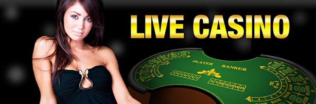 casino online roulette burn the sevens online