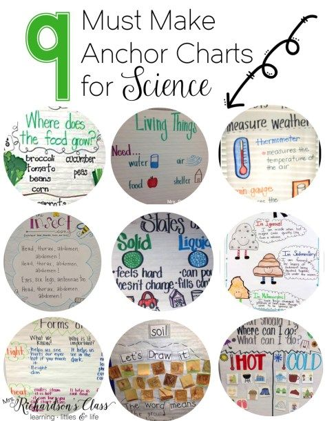 9 Must Make Anchor Charts for Science                                                                                                                                                     More