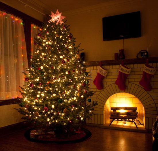 How We (Mostly) Baby-Proofed Our Christmas Tree