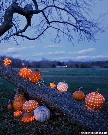 """love the """"dots"""" http://www.smallgardenlove.com/wp-content/uploads/2011/10/halloween-garden-pumpkin-lights.jpg"""