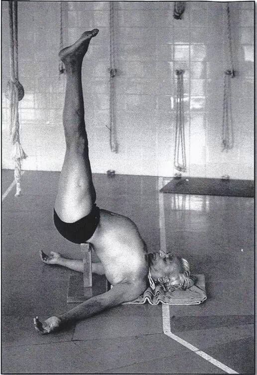 """""""The sleeping tortoise takes all its limbs into its carapace. So does the yogi: going back into himself he does not see anything worldly any longer, he makes peace in himself."""" — BKS Iyengar"""
