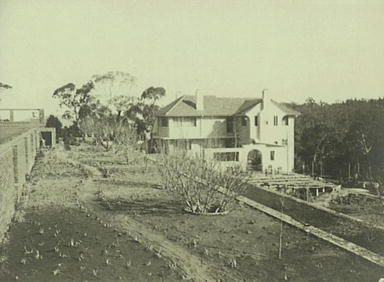Everglades Leura, 1933 - 1943, showing the terraces in place