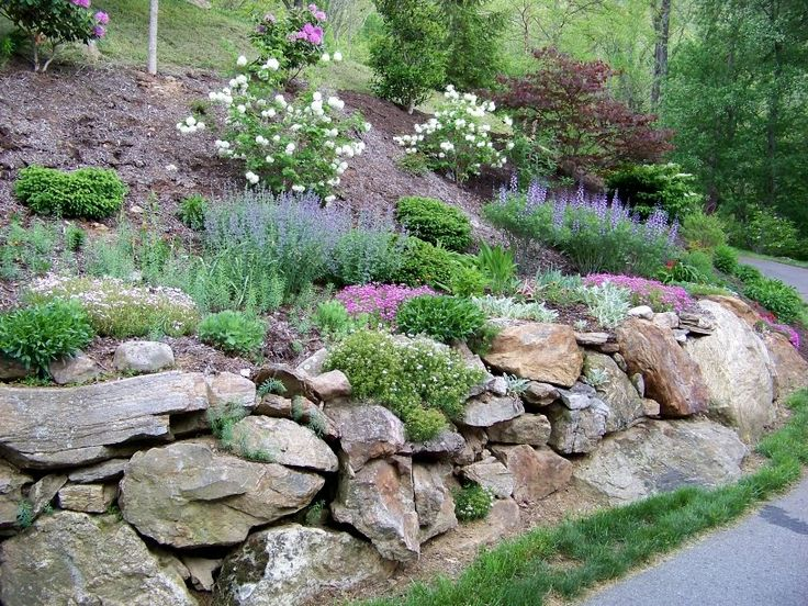 north hillside gardens pics | have been adding more groundcover shrubs and flowering perennials ...