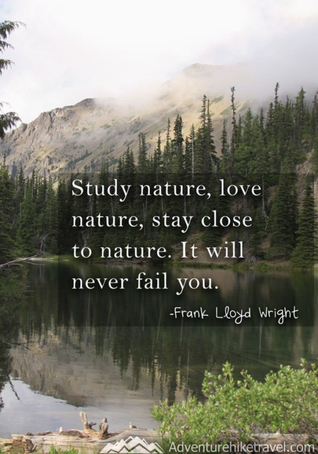 Love Nature Images